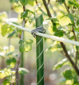 Преимущества композитных опор для растений